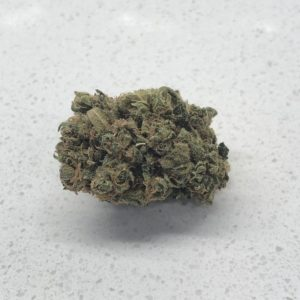 LBS – Palm Tree CBD