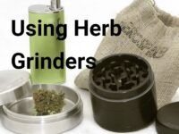 Using Herb Grinders | A Step by Step Guide
